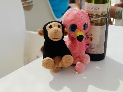 Pink Bird & Kevin the Monkey